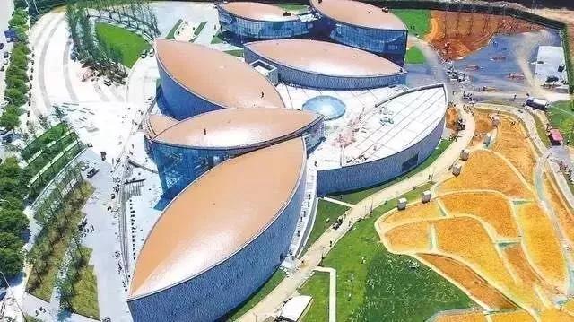 硬核!世界首个大型水稻博物馆--隆平水稻博物馆开馆