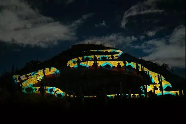 """你见过如此魔幻的沙漠光影植物园吗?个个都是""""颜值担当""""!"""